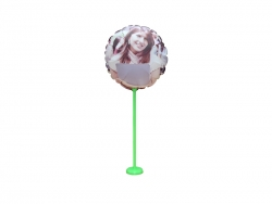 28cm Photo Balloon (Round)