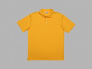 Polo Men's T-shirt (Mesh Interior)