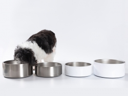 32oz/960ml Sublimation Blank Stainless Steel Dog Bowl (Silver)